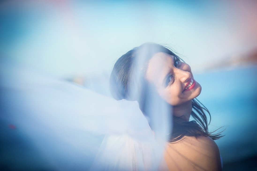 Bridal portrait through the veil