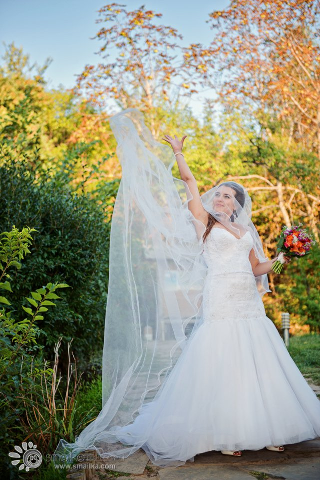 Bridal portrait veil and wedding dress