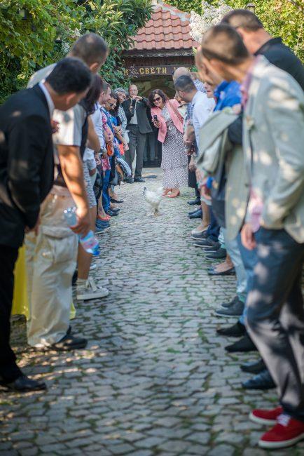 Photo 055 from Морската сватба на Дени и Светльо в Анел
