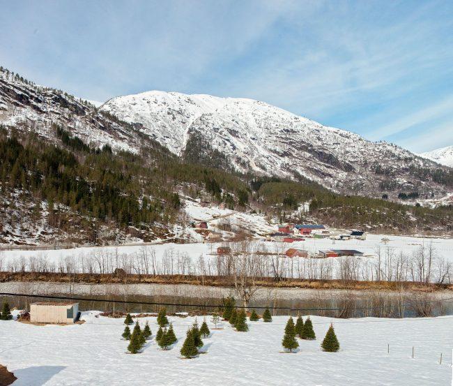Photo 020 from Сватба в Норвегия – Стела и Свайн