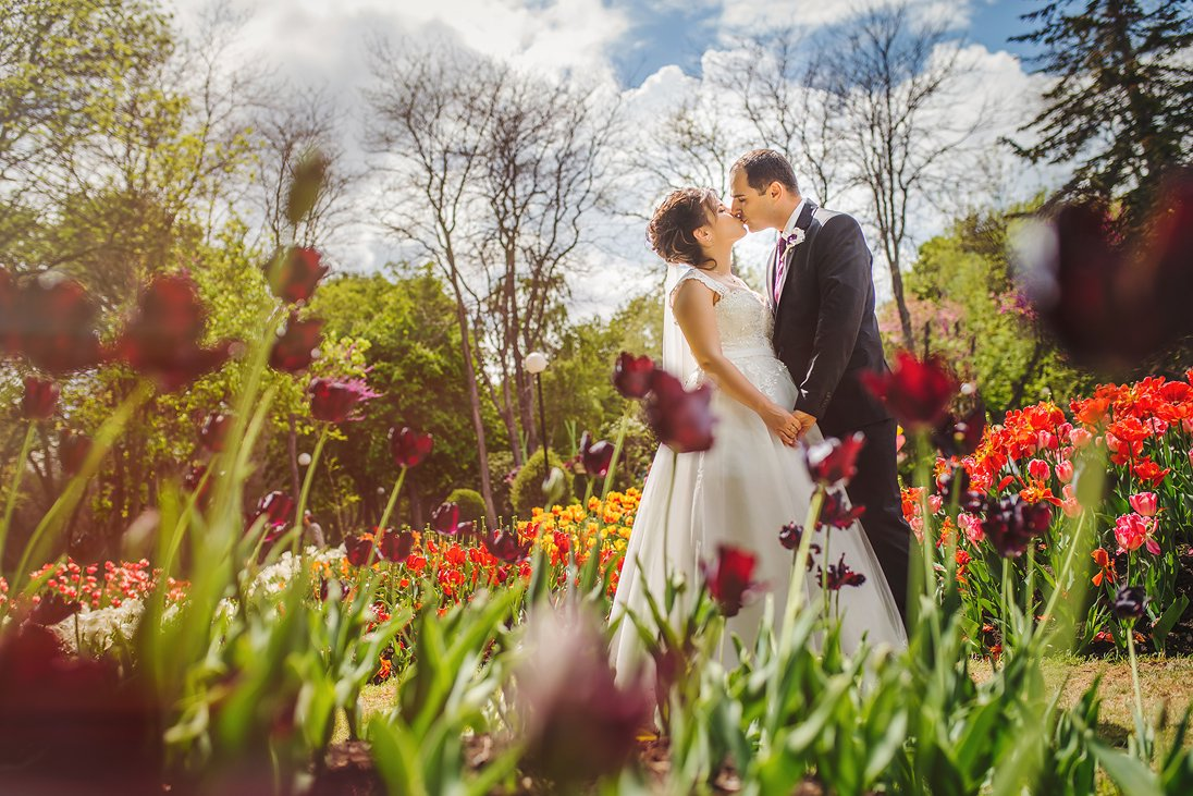 Wedding photosession in a tulips flower garden